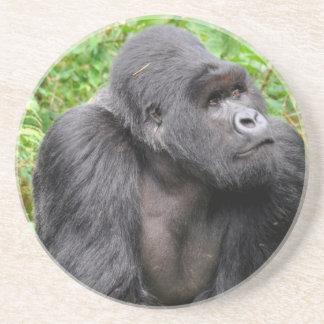 Mono feliz posavasos de arenisca
