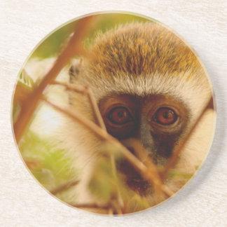 Mono fresco posavasos