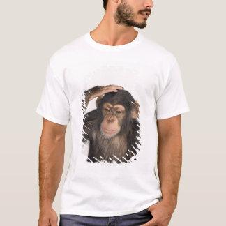 Mono que rasguña su cabeza camiseta