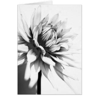 Mono tarjeta de felicitación hermosa de la flor