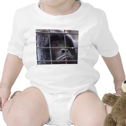 mono triste en imagen del primate de la jaula trajes de bebé