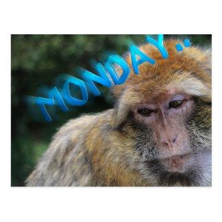 Mono triste sobre lunes postal