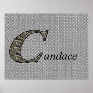 Monograma su poster conocido del Hydrangea de la i