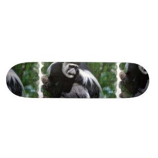Monopatín blanco y negro del mono