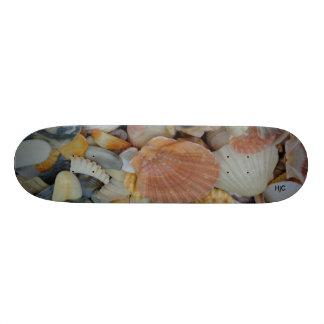 monopatín con las cáscaras del mar