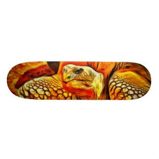 Monopatín de la tortuga