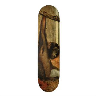 Monopatín del arte del vintage del mono del mono d