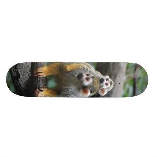 Monopatín del mono de ardilla del bebé
