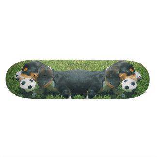 Monopatín del perrito del beagle