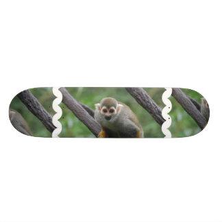 Monopatín dulce del mono de ardilla