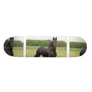 Monopatín frisio del caballo