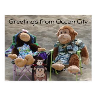 Monos del vago de la playa postal