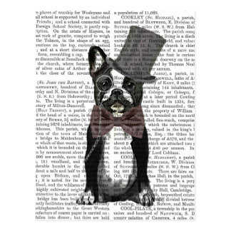 Monsieur Bulldog 2 Postal