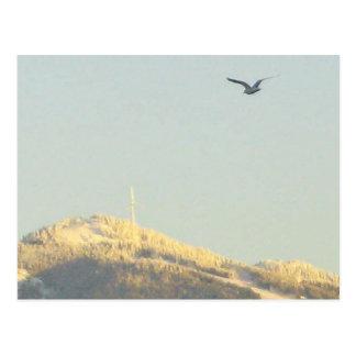 Montaña del urogallo, A.C. postal