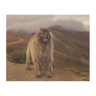 montaña Leonberger Impresión En Madera