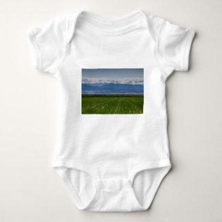 Montaña rocosa que cultiva la visión body para bebé