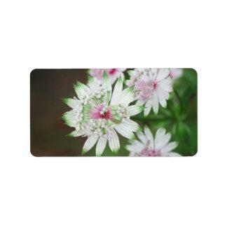 Montañas de la flor salvaje etiquetas de dirección