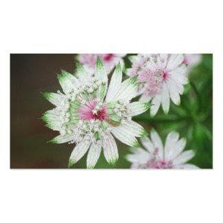 Montañas de la flor salvaje tarjetas de visita