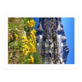 Montañas y flores postal