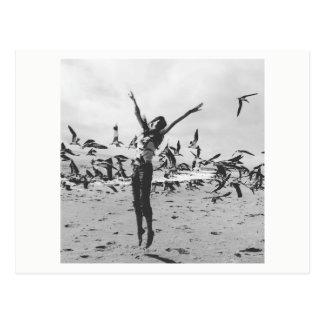 Mosca con los pájaros postal