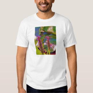 Mosca fucsia de la flor y del dragón camiseta