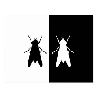 mosca postal