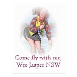Mosca venida conmigo, jaspe pequenito NSW Postal