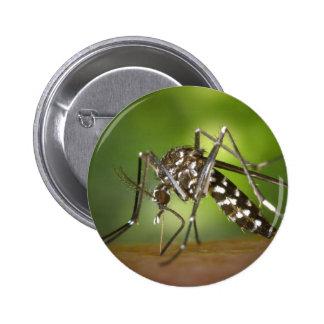 Mosquito del tigre pin