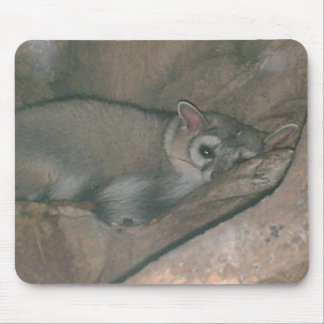 Mousepad animal