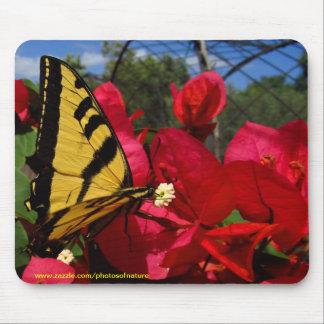 Mousepad - Butterlfly que chupan en una flor Alfombrilla De Ratón