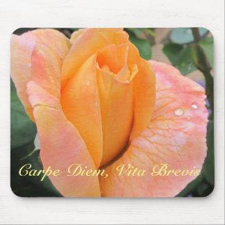 Mousepad--Color de rosa anaranjado con las gotas Alfombrilla De Ratón