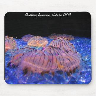 Mousepad - medusa del acuario .cool. foto por DSM