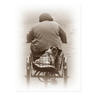 Muchacho y perro del barro amasado que va para una postal
