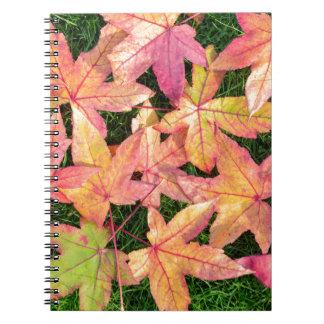 Muchas hojas de arce coloridas del otoño en hierba cuaderno