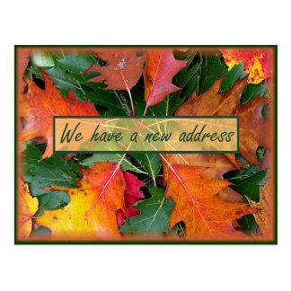 Mudanza de las hojas del roble de la temporada de postal