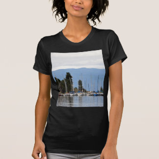Muelle del barco en el lago de cabeza llana camisas