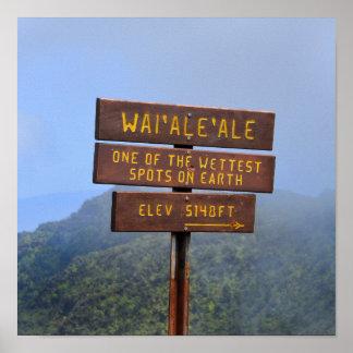 Muestra de Waialeale del soporte, Kauai, Hawaii Póster