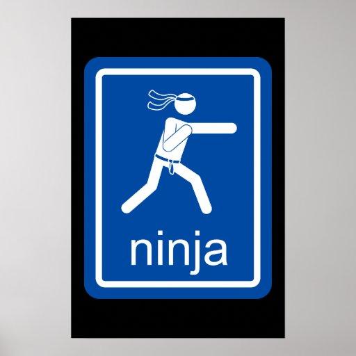 muestra del universal del ninja poster