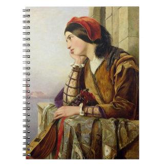 Mujer en el amor, 1856 cuadernos