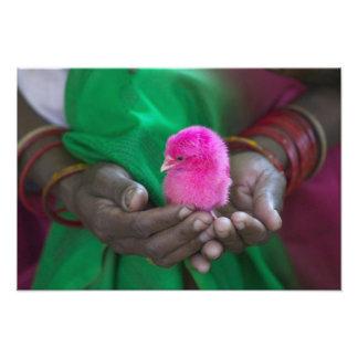 Mujer que sostiene un pequeño polluelo pintado con impresion fotografica