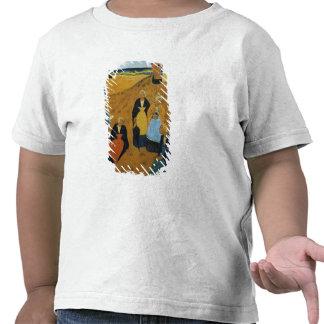 Mujeres bretonas jovenes que llevan los mantones camiseta