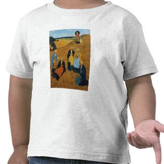 Mujeres bretonas jovenes que llevan los mantones camisetas