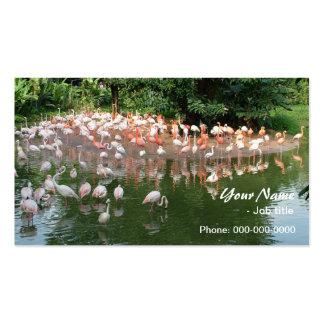 multitud rosada del flamenco tarjetas de visita