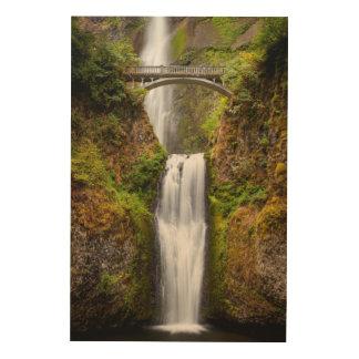 Multnomah baja a lo largo de la garganta 2 del río cuadro de madera