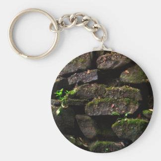 Musgo en la pared de la roca llaveros