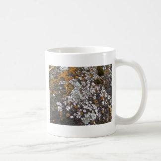 Musgo español y granito taza