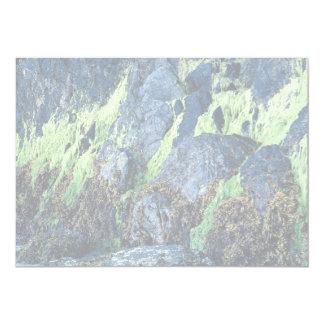 Musgo verde claro en rocas del bosque invitación