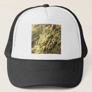 Musgo y mostos soleados gorra de camionero