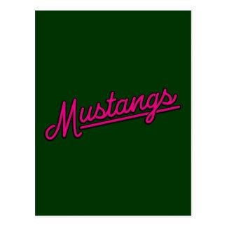 Mustangos en magenta