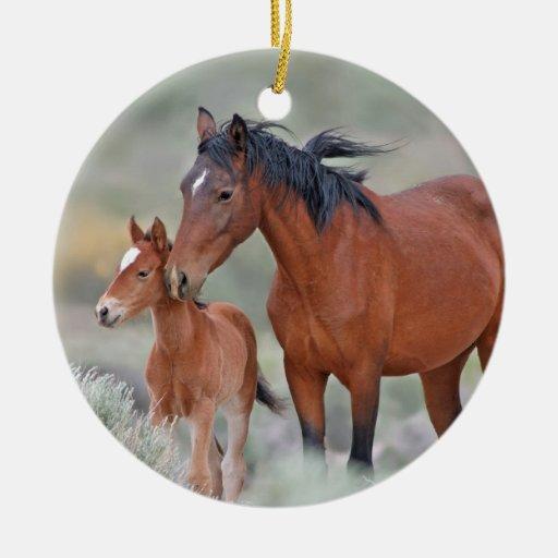 Mustangos salvajes en el paso de Altamont Adorno De Reyes